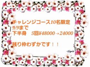 2013-09-01-16-08-39_deco