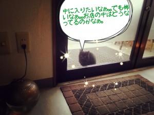 2014-01-12-09-59-18_deco